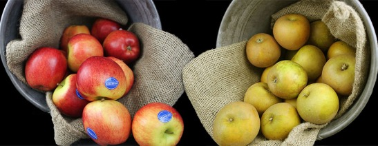 Farmers Choice Autumn English Apples
