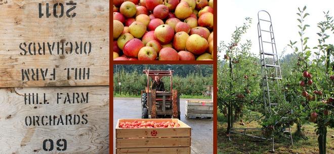Farmers Choice visit Hill Farm Orchard